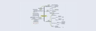 Individuelle Softwareentwicklung von Reimer